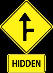 hidden_driveway